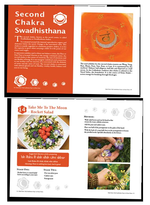 Vidya Design - Web Design & Development, SEO, Marketing
